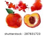 watercolor peach   Shutterstock .eps vector #287831723