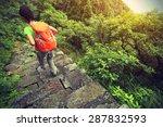 Young Woman Backpacker Hiking...