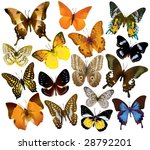 vector butterfly collection | Shutterstock .eps vector #28792201
