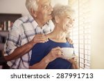 senior couple next to the... | Shutterstock . vector #287991713