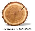 Tree Ring  Log  Wood.