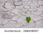 heart shaped leaves on dried... | Shutterstock . vector #288658007