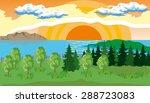 Landscape With Pine  Fir  Gras...