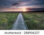 wooden path on marsh and summer ...   Shutterstock . vector #288906227