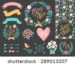 big wedding graphic set... | Shutterstock .eps vector #289013207