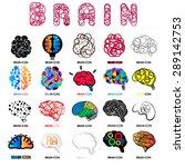 brain | Shutterstock .eps vector #289142753