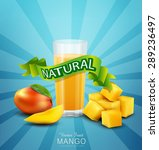vector background with mango... | Shutterstock .eps vector #289236497