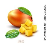 vector ripe mango fruit with... | Shutterstock .eps vector #289236503