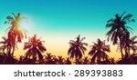 Tropical Paradise Design Banne...