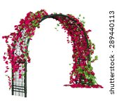 Arched Pergola Of Steel With...