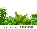 tropical jungle.   Shutterstock .eps vector #289463807