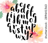 hand drawn alphabet. ink hand... | Shutterstock .eps vector #289641563