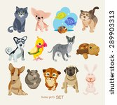 set of pets | Shutterstock .eps vector #289903313