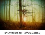 mystic forest illustration with ... | Shutterstock . vector #290123867