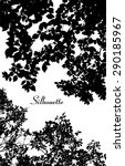 vector leaves silhouette | Shutterstock .eps vector #290185967