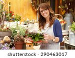 small business owner. portrait... | Shutterstock . vector #290463017