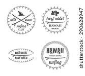 surfing vector emblem set with... | Shutterstock .eps vector #290628947