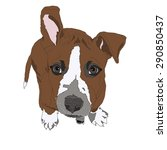 dog pattern american... | Shutterstock .eps vector #290850437