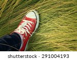 red shoes with a background of... | Shutterstock . vector #291004193