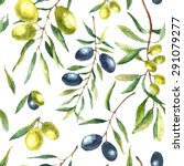 Watercolor Olive Branch...