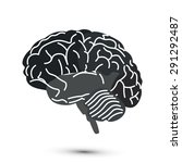 vector brain | Shutterstock .eps vector #291292487