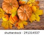 Pumpkin  Halloween  Autumn.