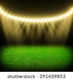 the soccer stadium with the... | Shutterstock . vector #291439853