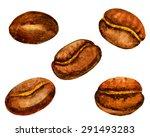 watercolor coffee beans set.... | Shutterstock .eps vector #291493283