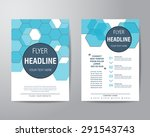 abstract hexagon brochure flyer ... | Shutterstock .eps vector #291543743