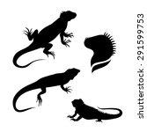 lizard iguana set of... | Shutterstock .eps vector #291599753