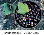 Black Currants In The Black...