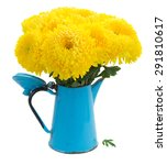 Yellow Mum Flowers In Blue Pot...