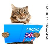 Funny Cat Is Learning English....