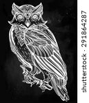 highly detailed hand drawn owl... | Shutterstock .eps vector #291864287