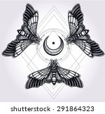 butterflies moth with moons ... | Shutterstock .eps vector #291864323
