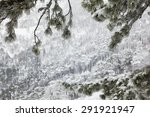 Snow Covered Landscape In The...