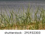 coast of the baltic sea. | Shutterstock . vector #291932303