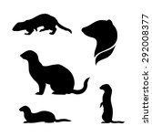 ferret icons and silhouettes.... | Shutterstock .eps vector #292008377