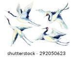 watercolor flying crane bird... | Shutterstock . vector #292050623