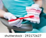 woman dentist with gloves... | Shutterstock . vector #292172627