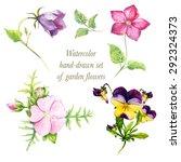 watercolor hand drawn vector... | Shutterstock .eps vector #292324373