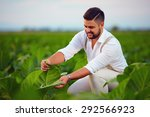 Skilled Plantation Owner Check...