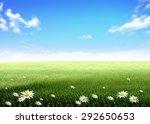 White Flowers Green Grass Hill...