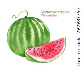 watercolor vector watermelon | Shutterstock .eps vector #292989797