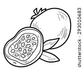 coloring book  fruits and... | Shutterstock .eps vector #293010683