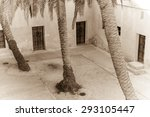 palm trees grow in the in the... | Shutterstock . vector #293105447