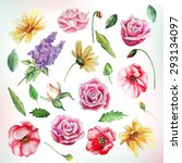 big watercolor flowers and... | Shutterstock .eps vector #293134097