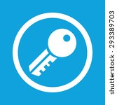 image of key in circle ... | Shutterstock . vector #293389703