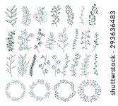hand draw  flower elements set. ... | Shutterstock .eps vector #293636483