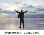 businessman raising his hands... | Shutterstock . vector #293676593